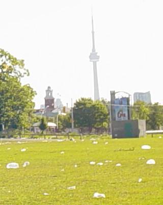 Toronto photo contest