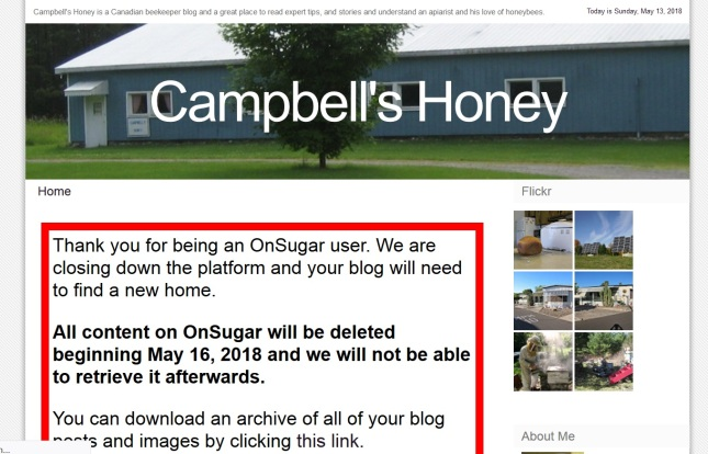 CampbellsHoney-homepage